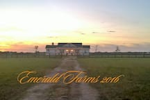 Barndomimium at our horse farm- view of main house here