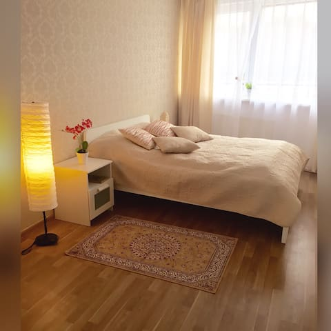 Comfortable apartment near the sea - Palanga - Apartment