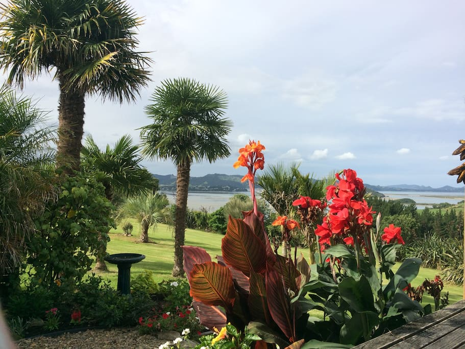 The outlook from our side deck looking over the garden paddock with harbour in the background