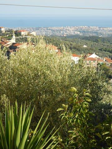 Panorama su Albenga