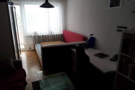 Geräumige Ein Zimmerwohnung im München-Laim - München - Apartment