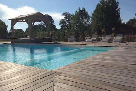 Appartement T2 climatisé en rez de jardin piscine - Lecci