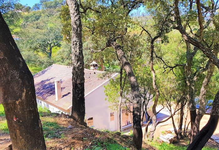 Quinta da Coruja Monchique, tranquil rural villa