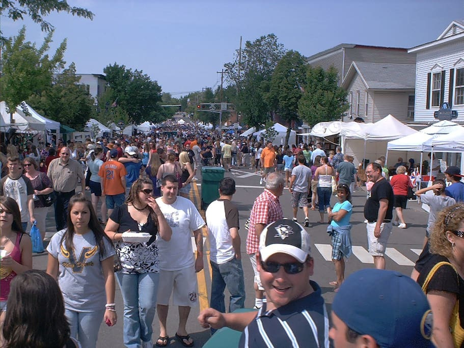 Lots to see and do at the many music and art festivals.