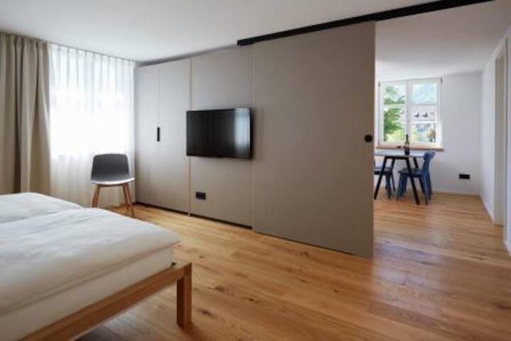 Sternen Bohlingen Aparthotel, (Singen), Apartment Höri, 39qm, 1 Schlafzimmer, 1 Wohn-/Schlafzimmer, max. 3 Personen