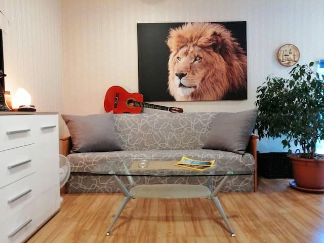 Lion's Cave 71