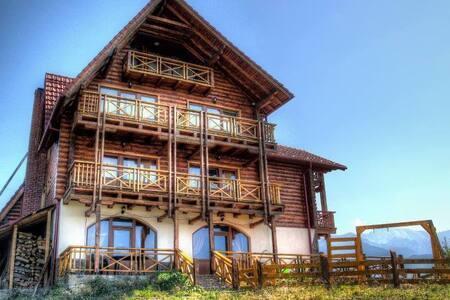 Vila for rent 10 rooms - Sohodol - 別荘