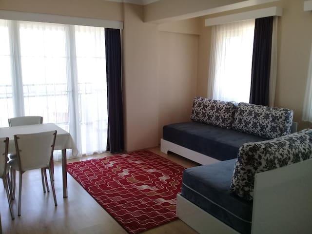 Living Room Type 2