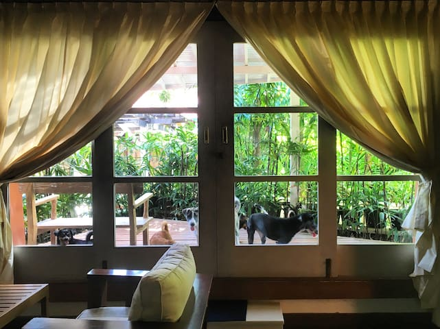 Spacious Leisure Villa Sanur No.15 - Denpasar - House