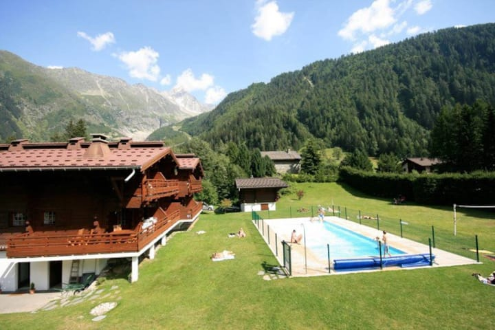 Flat in a Chalet / pool and ski slopes