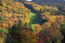 Fall foliage at Mount Sunapee