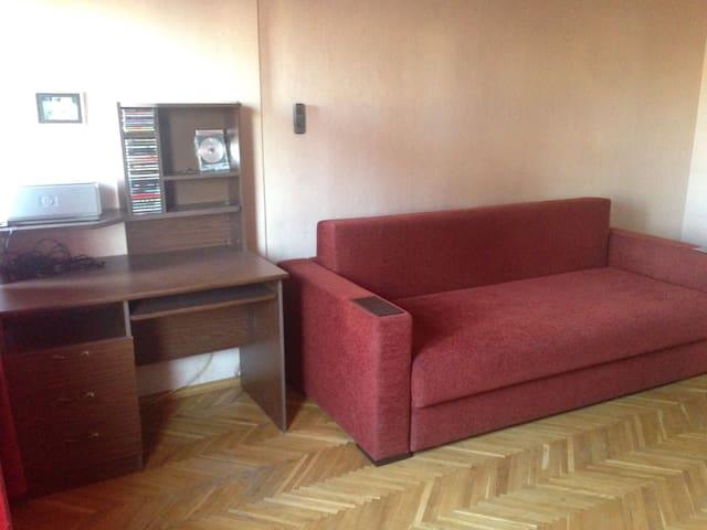 Comfortable apartment near city centre