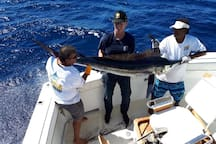 Cabo is the fishing capital of the world!  We can help arrange a fishing trip.  The harbor and boats are walking distance from the house.