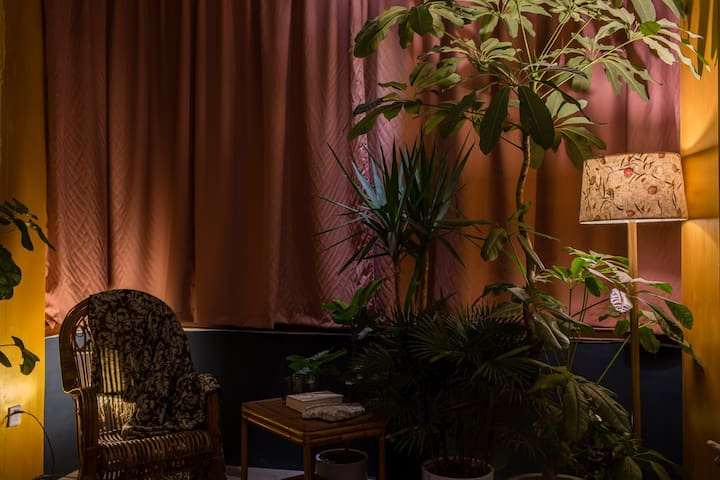 中山路旅行作家【好奇心博物馆】房间在展博物学版画和自然风物