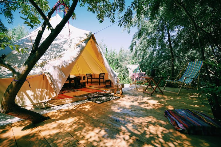 Aucklands Pop Up Luxury Camping  Experience