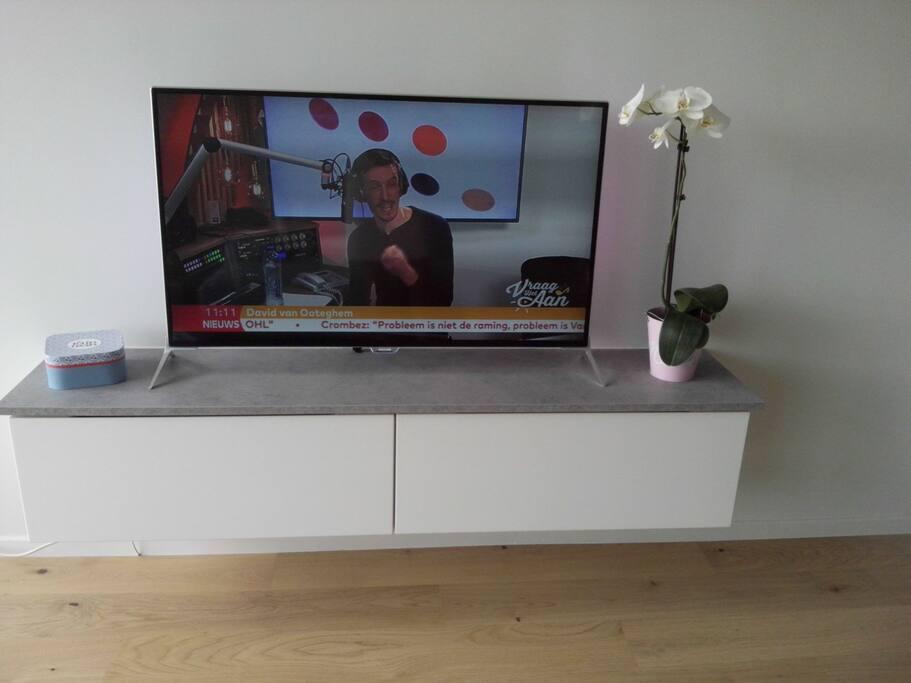 TV met netflix en draadloze internettoegang (wifi)