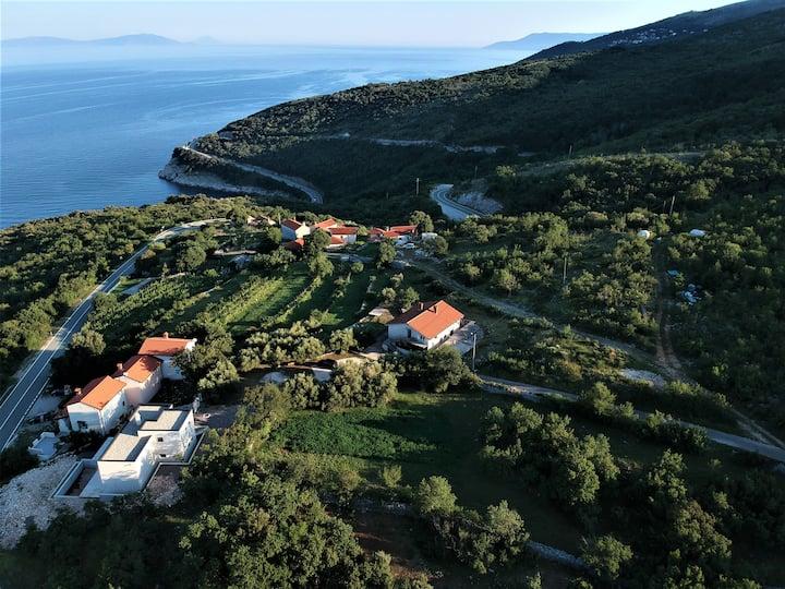 Guesthouse Villa Brestova
