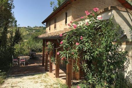 Le Marche, Italien: Rustico in Offida