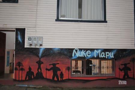 Hostel Ñuke Mapu Valdivia - Valdivia - House