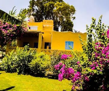 COCO VILLA - Faiyum Oasis - Ház
