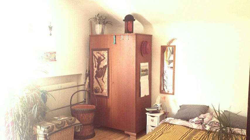 Cool room in a friendly traveller's house - Colmar - Dom