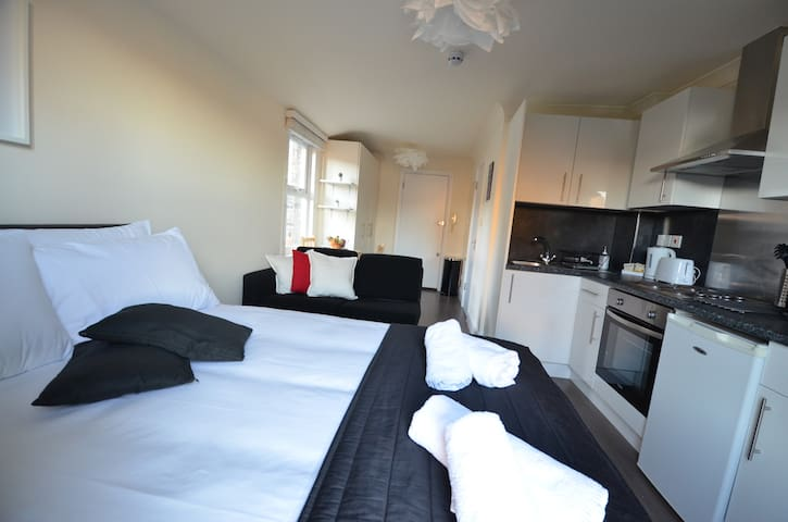 Modern Flat London with Private Kitchen/Bathroom - Londres - Pis