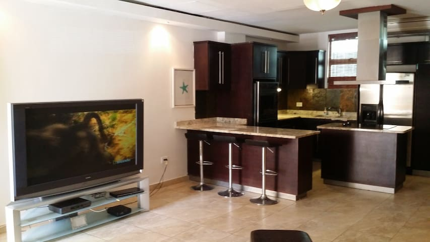 BIG APT., POOL, WIFI, BEST LOCATION. - Carolina - Apartment
