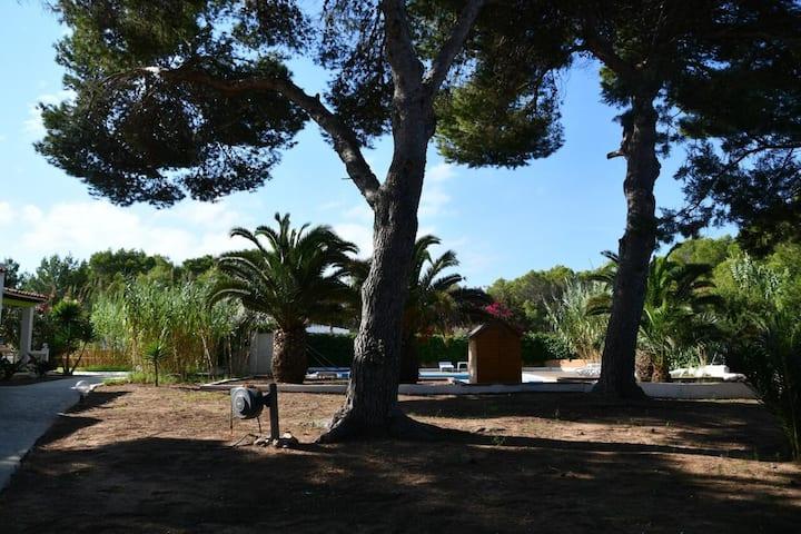 "Apartment ""Lesley - de 1 dormitorio"" near the Beach with Pool, Wi-Fi, A/C, Terrace & Garden; Parking Available"