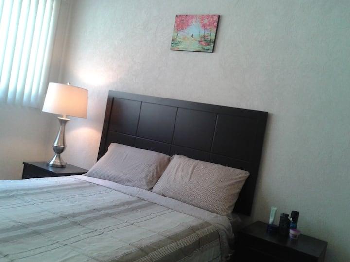 Nice room in new apto 7 mins to central  histórico
