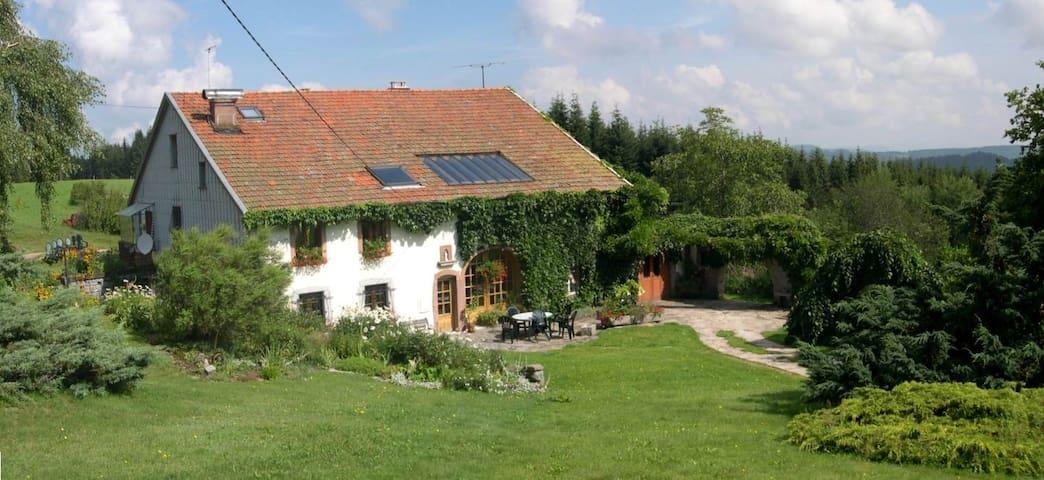 Gîte en pleine nature, calme à 10 min de Gérardmer - Granges-sur-Vologne - Leilighet