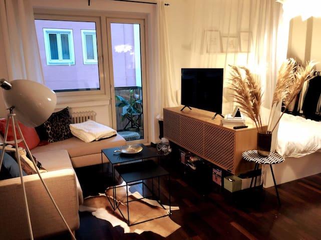 Gemütliches Apartment im Zentrum Schwabings