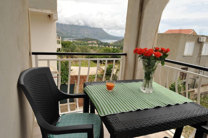 Apartments Sea Star - One Bedroom Apartment with Balcony (A2)