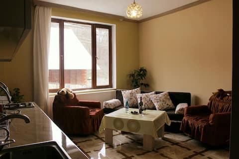 "Apartments ""Gogias tsikhe """