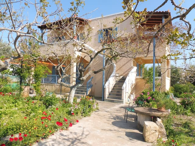 Sweet & cosy house, close to Aegina town