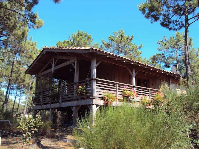 Maison en bois à proximité de l'océan