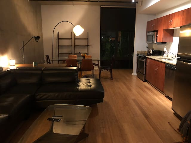 Downtown Contemporary Condo