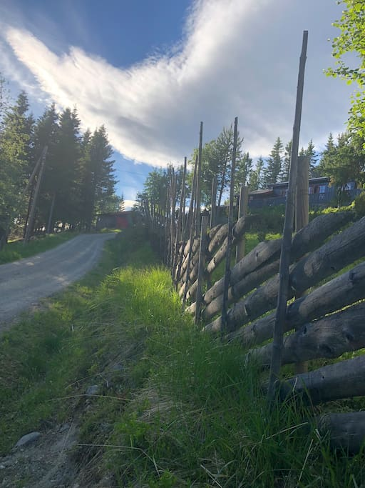 The road to the cabin