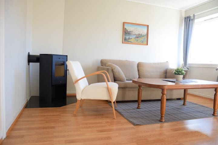 Simple 1BR Apartment in Bergen Center (2) - Bergen - Appartement