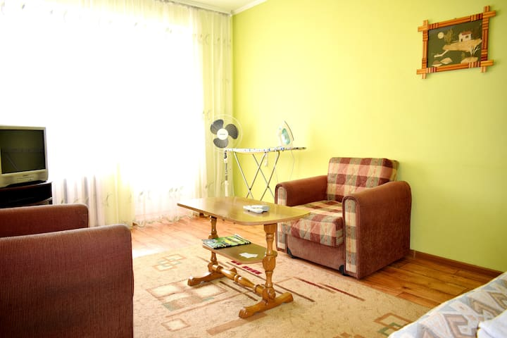 Nice budget 1 bedroom apartment with amenities