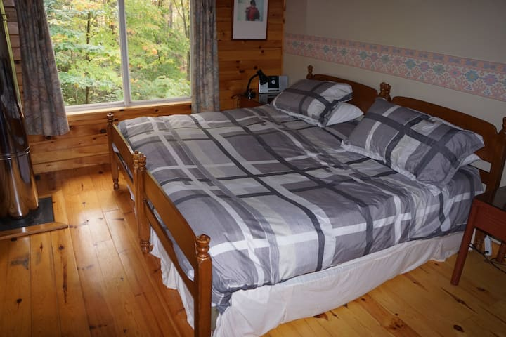 Guest room either a king bed or two twin beds