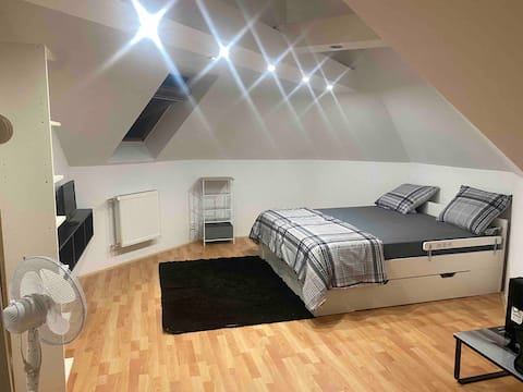 Příjemní pokoj s vlastni kuchyní a koupelnou