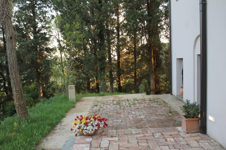 TUSCAN HILLS - MASTERS OF LANDSCAPE - ROMEO-ROOM