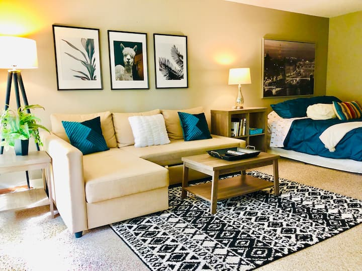 Cozy Studio near Mayo Clinic & Downtown Rochester