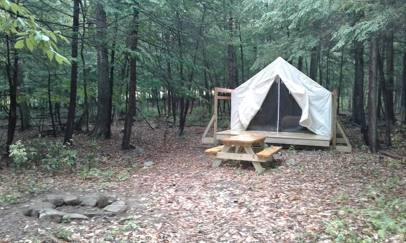 Foxtail Farm Stay: Beech Grove Glamping Site