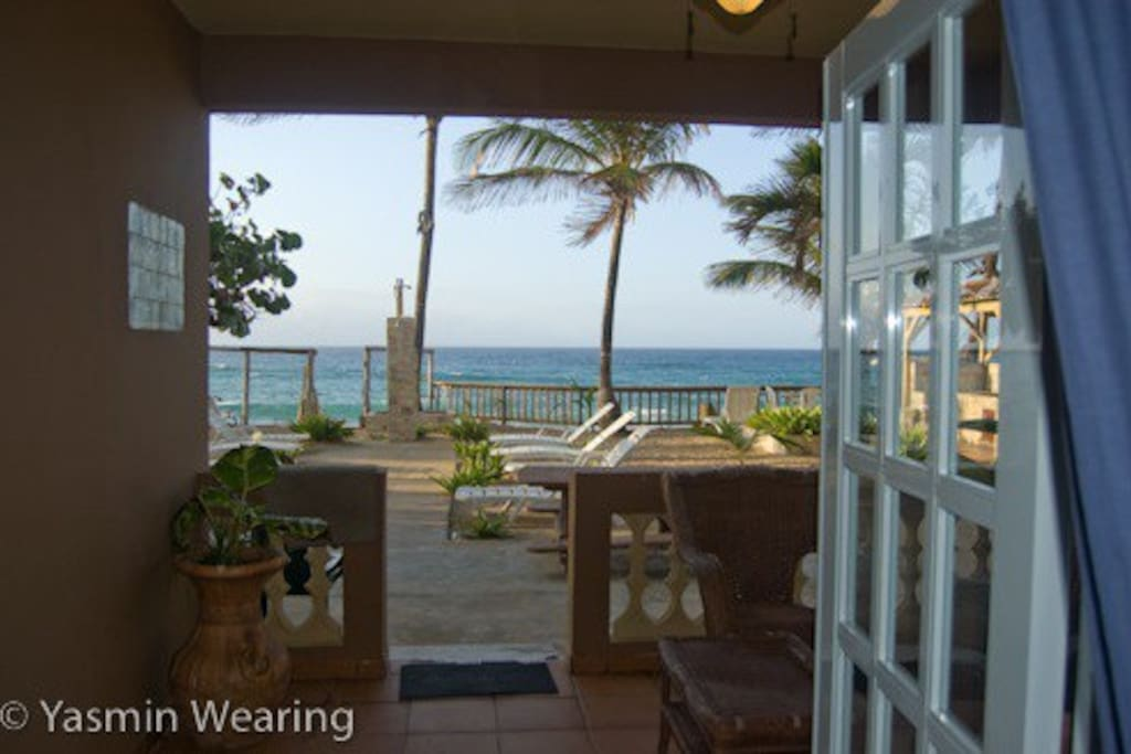 Watch the Whales jump from your bed, your balcony or while your cooking lunch