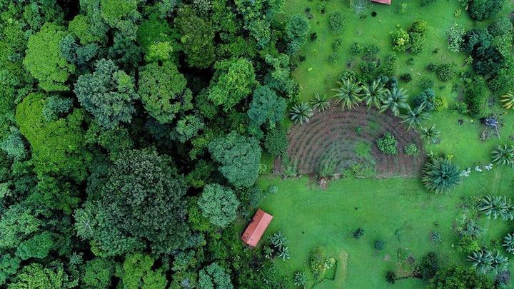 """Casa Pequeña Eco farm """"Congo"""" 4 persons"""