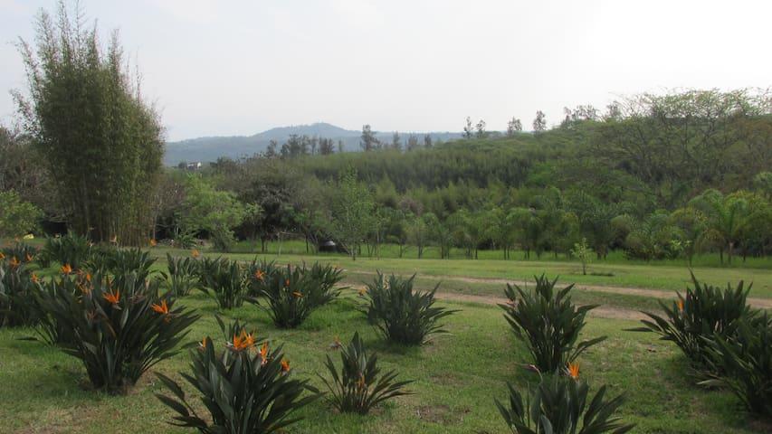 Casa de campo jardines, lago, bosque bambu, calma - Xalapa - Rumah