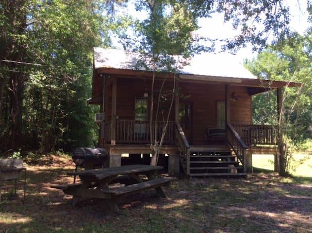 Shaded Creekside Cabin