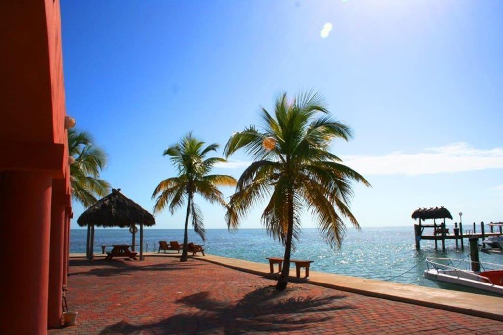 Fish camp condominiums for rent in marathon florida for Ocean isles fishing village