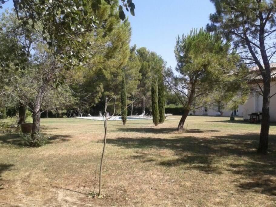 La maison et une partie du parc